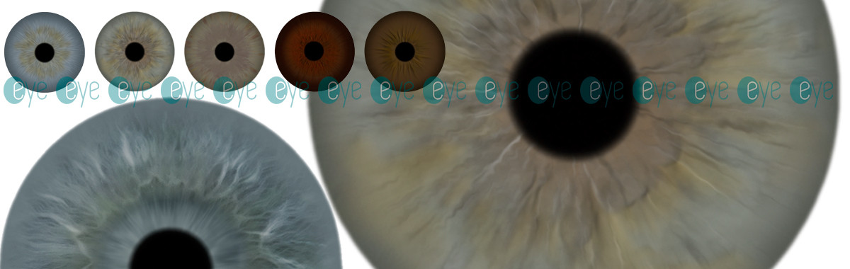 Ocular irises